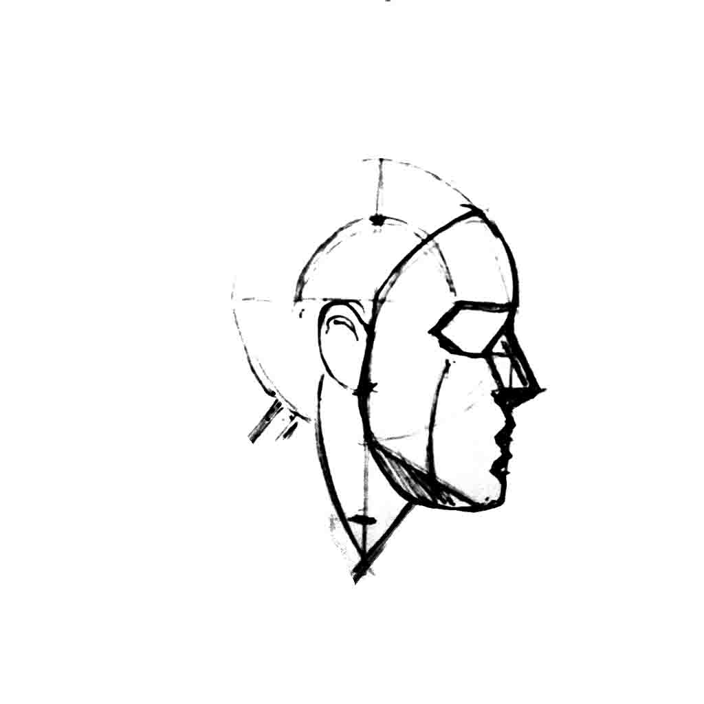 Drawing the head
