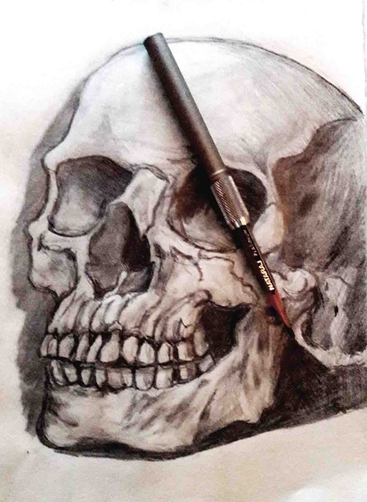 Reference-pencil-Drawing-Skull